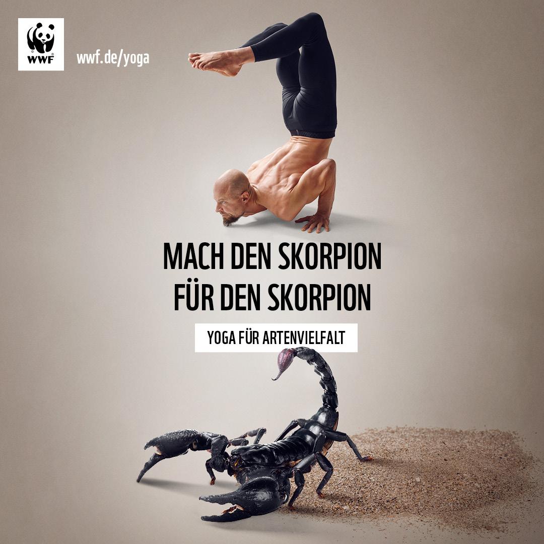 Yoga für Artenvielfalt: mit WWF und Ron Steiner für bedrohte Tiere spenden
